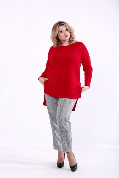 01372-1   Красная блузка