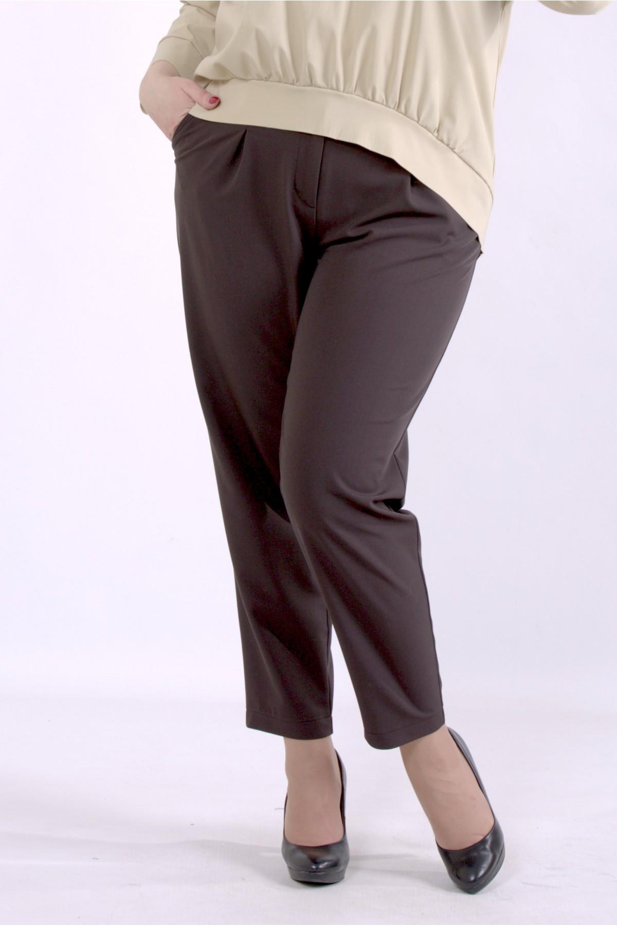 b069-3 | Коричневые брюки
