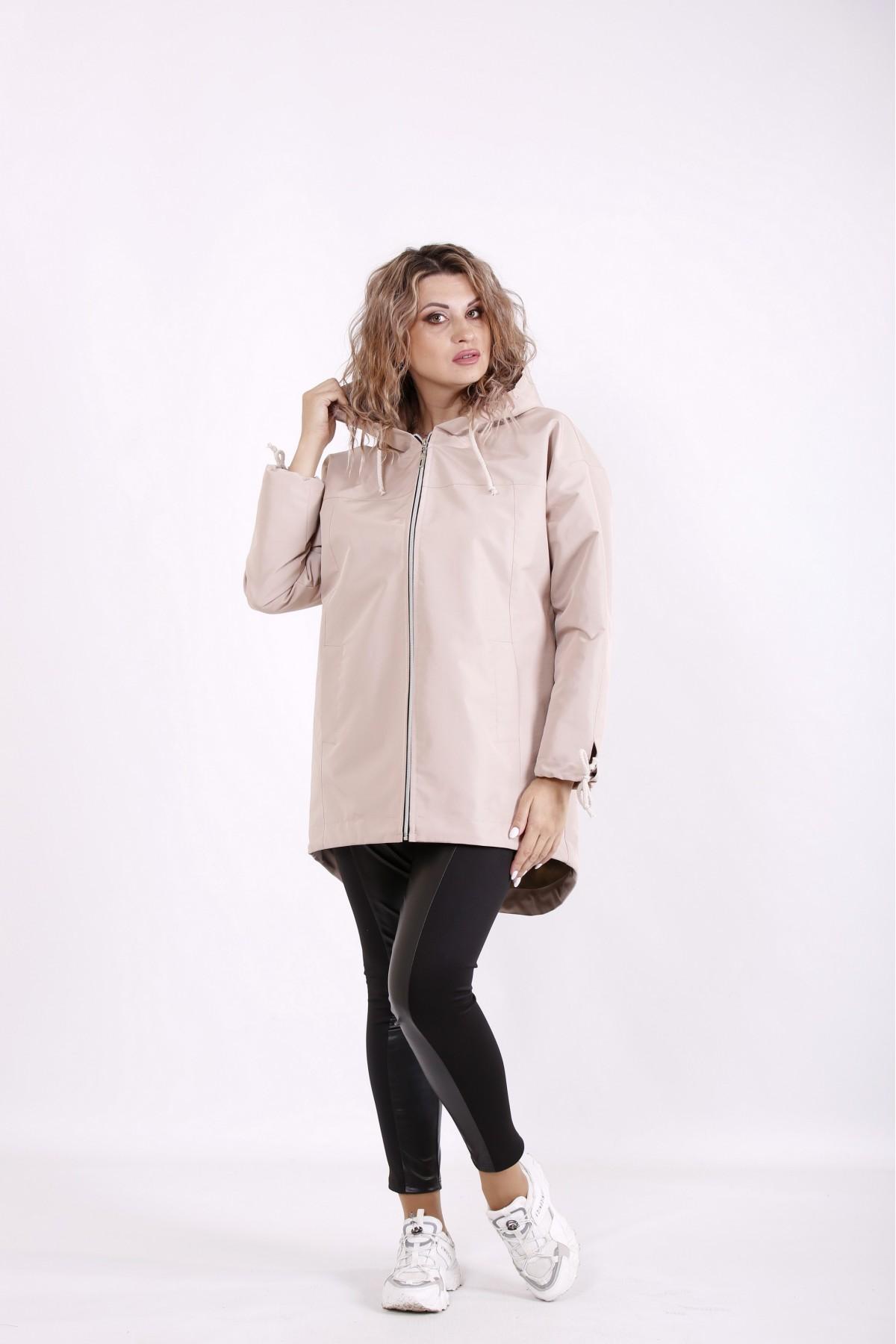 Куртка t01308-1