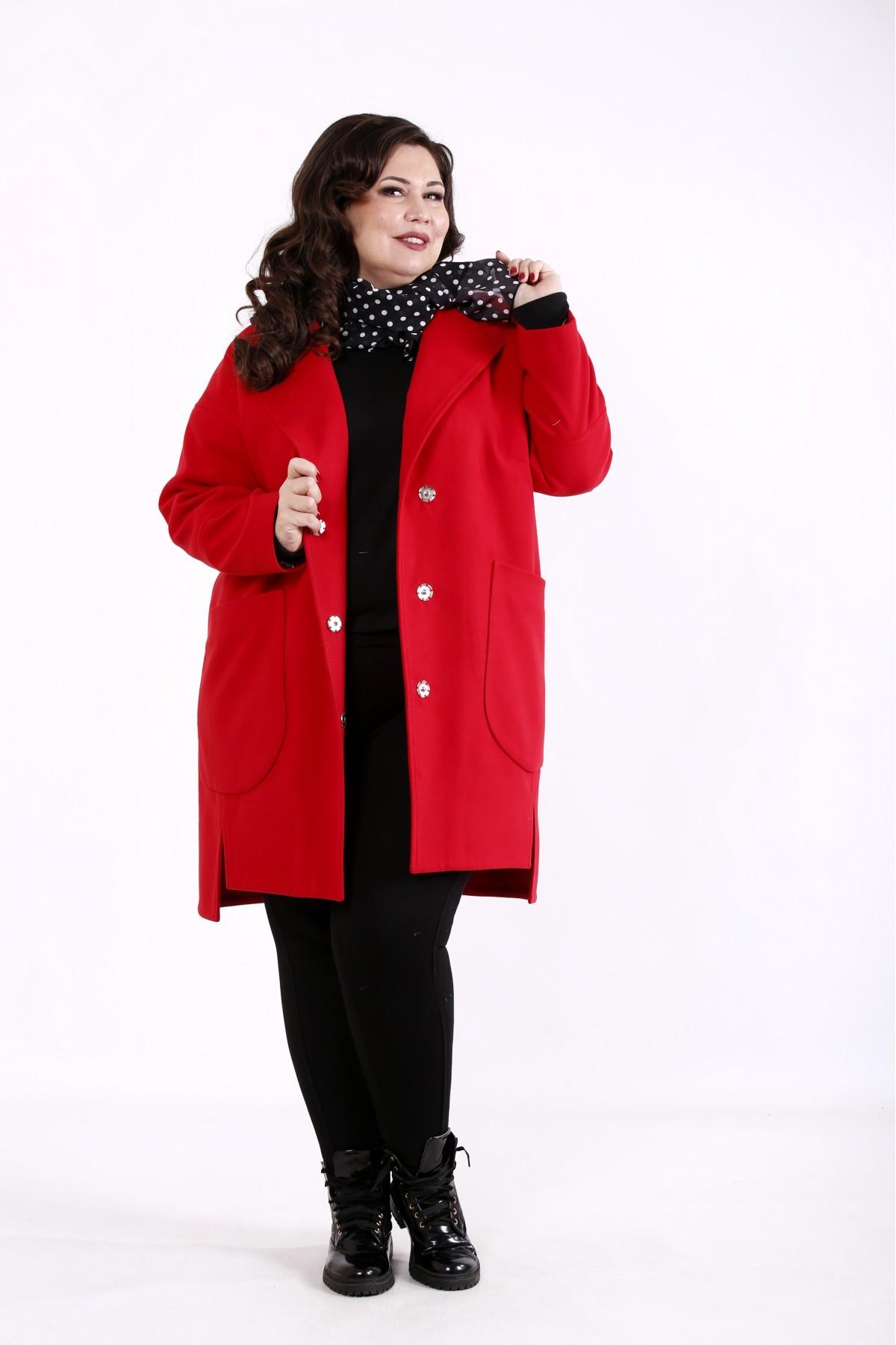 Кашемировое пальто t01764-3